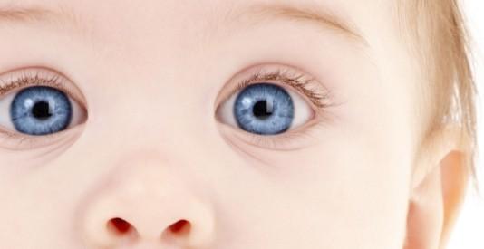 Baby-Eyes-534x275