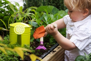 a 2 year old toddler gardening with watering can
