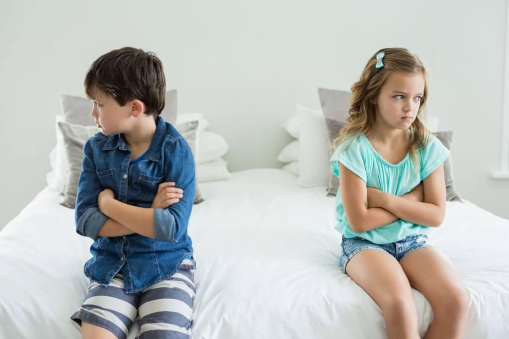Angry-Siblings